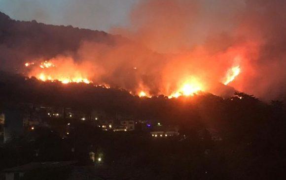 Incendi boschivi: un nuovo paradigma